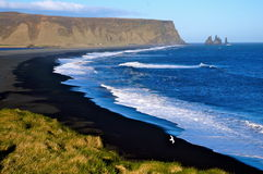 Vik Islândia Imagens de Stock