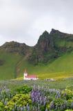 Vik ja Myrdal kościół w Vik wiosce Iceland Zdjęcia Royalty Free