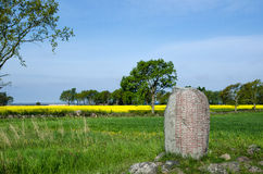 Viking age stone Royalty Free Stock Image