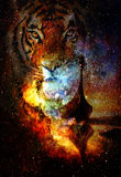 Viking Boat and tiger head  in space with stars Royalty Free Stock Photography