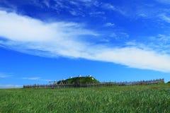Viking bosättning royaltyfri fotografi