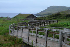 Viking bosättning Arkivbild