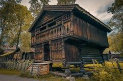 Viking dom Zdjęcie Royalty Free