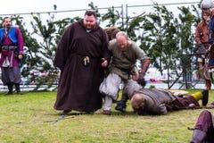 Viking Festival 2014 Arkivbild