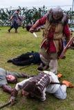 Viking Festival 2014 Royaltyfria Bilder
