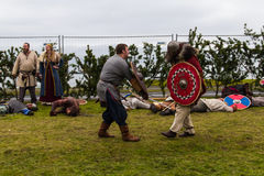 Viking Festival 2014 Royaltyfri Bild