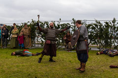 Viking Festival 2014 Royalty Free Stock Images