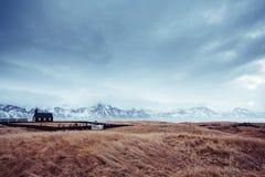 Viking-Geist Stockfotografie