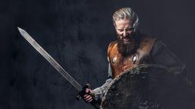 Viking gekleed in Noords pantser houdt een schild en een zilveren zwaard stock foto