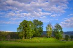 Viking grób z brzoz drzewami Zdjęcie Royalty Free