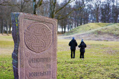 Viking gravar på den Borre kullekyrkogården i Horten, Norge Royaltyfri Fotografi