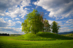 Viking grave with birch trees. Viking grave in Norway with birch trees and cloudy sky royalty free stock photo