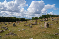 Viking graveyard, Lindholm Hoeje, Aalborg, Denmark. A huge viking grave yard with more than 700 graves placed at Lindholm Hoeje, Aalborg, Denmark Royalty Free Stock Photo