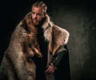 Viking konung in een traditionele strijderskleren royalty-vrije stock afbeelding