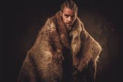 Viking konung i traditionell kläder för en krigare Arkivbild