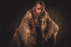 Viking konung in a traditional warrior clothes Stock Photography