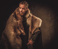 Viking konung in a traditional warrior clothes Stock Photos