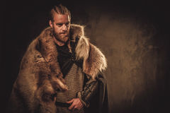 Viking konung in a traditional warrior clothes.  stock image