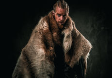 Viking konung in a traditional warrior clothes.  Royalty Free Stock Images
