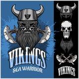 Viking krigare och beståndsdelar Arkivbild