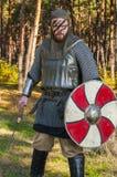 Viking que sostiene la espada y el escudo sobre fondo salvaje de la naturaleza Imagenes de archivo