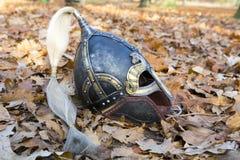 Viking roder Royaltyfri Fotografi