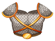A viking's body shield Royalty Free Stock Photos