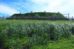 Viking settlement Stock Images