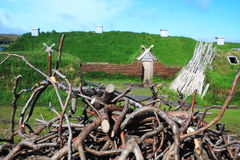 Viking settlement Royalty Free Stock Photos