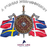 Viking shield decorated with runes and crossed axes and sword on the background of flags of Scandinavian countries Royalty Free Stock Photos