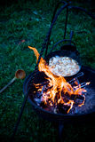 Viking style camp fire Royalty Free Stock Photos