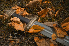 Viking sword against the backdrop of autumn leaves Stock Photo
