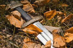 Viking sword against the backdrop of autumn leaves Royalty Free Stock Photography