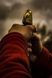 Viking Warrior imagem de stock royalty free