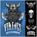 Viking warrior and  elements Stock Photography