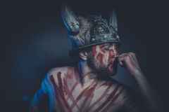 Viking warrior with a horned helmet and war paint on his face Royalty Free Stock Images