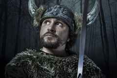Viking warrior, male dressed in Barbarian style with sword, bear Royalty Free Stock Photography