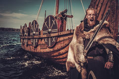 Viking warrior with sword and shield standing near Drakkar on the seashore. Serious viking warrior with sword and shield standing near Drakkar on the seashore royalty free stock photography