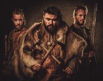 Vikingar med deras konung i traditionell kläder för en krigare royaltyfria foton