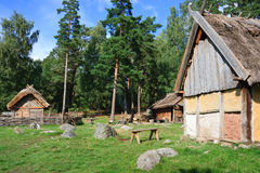 vikings by royaltyfri bild
