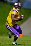 Vikings contre Broncos Images libres de droits