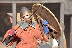 Vikings duel Royalty Free Stock Images