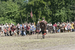 Vikings Ready for the Battle Royalty Free Stock Photography