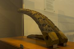 Ancient Preserved things at viking ship museum stock images