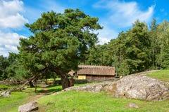 Vikings village. Sweden Stock Photo