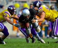Vikings vs. Dracs Stock Photo