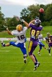 Vikings vs. Giants Royalty Free Stock Photos