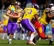 Vikings vs. Invaders Stock Photos