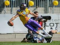 Vikings vs. Panthers Royalty Free Stock Photo