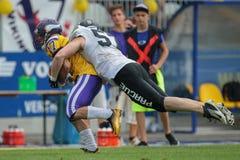 Vikings vs. Panthers Royalty Free Stock Photos